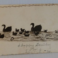 Ink drawing dated 1886, family of ducks